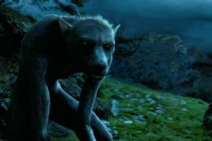 Remus Lupin as a werewolf. harrypotter.wikia.com