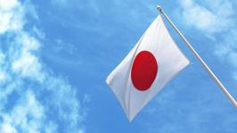 The Japanese flag is beautiful in its simplicity. (Picture from www.reference.com)
